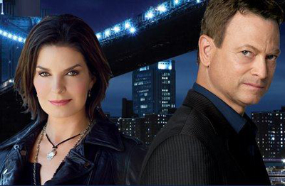 CSI New York s9
